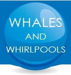 whalesandwhirl