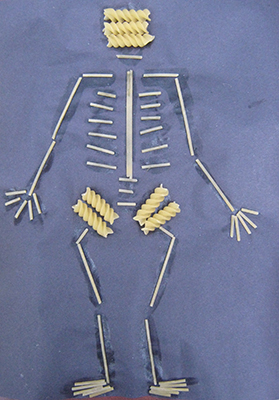 HumanSkeleton